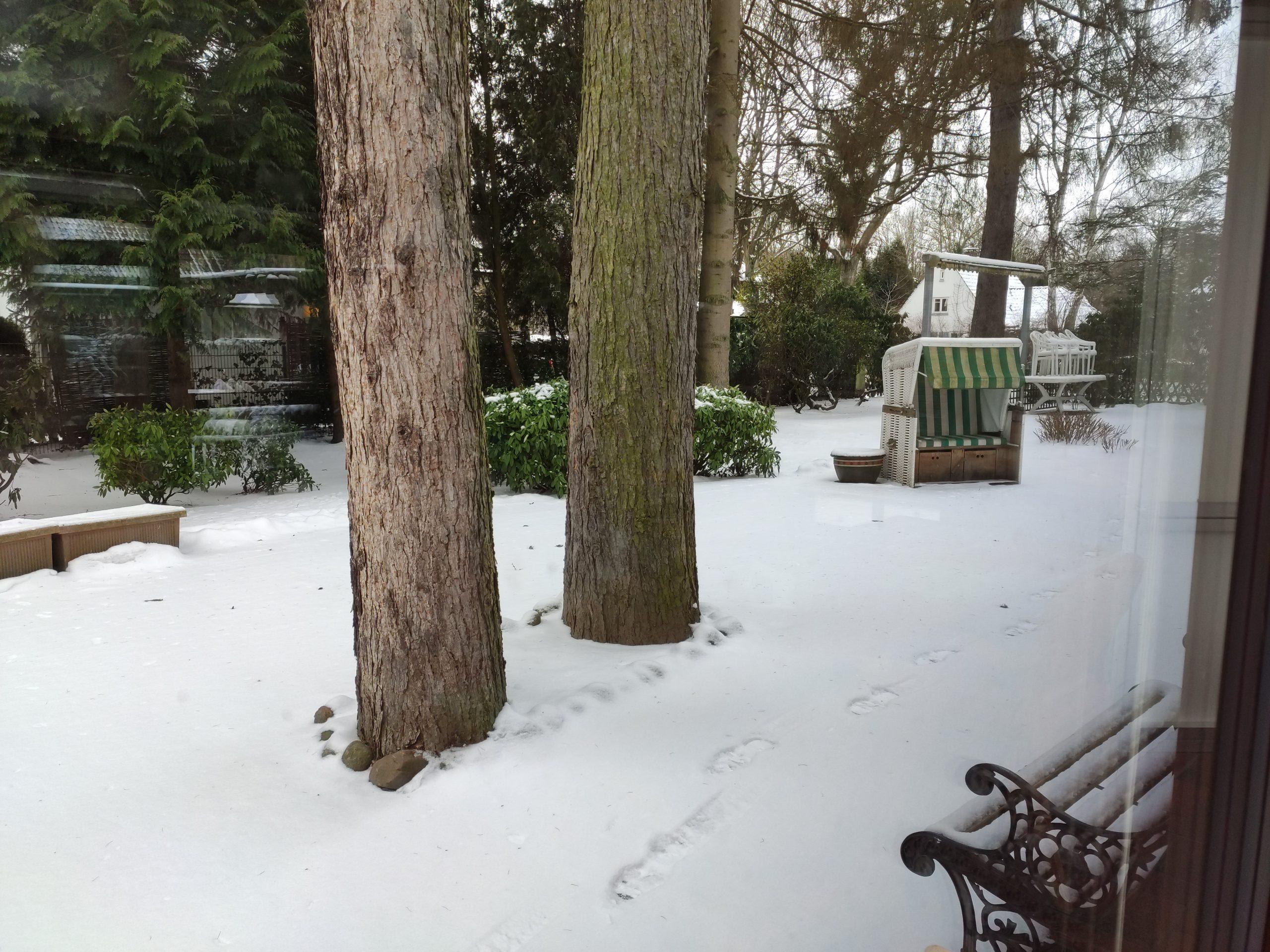 Der Blick in den zugeschneiten Garten